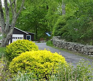Entrance in Spring