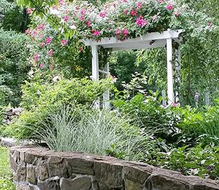 Lois' Garden & Rose Arbor